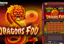 Dragons Foo by sega sammy creation